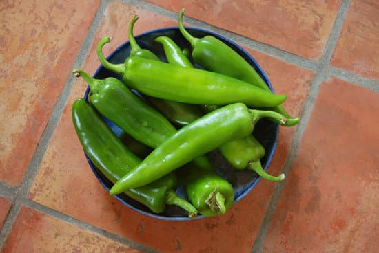 Types Of Hottest Peppers: Things You Must Know Before Consuming